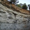 Canyon Wall 02